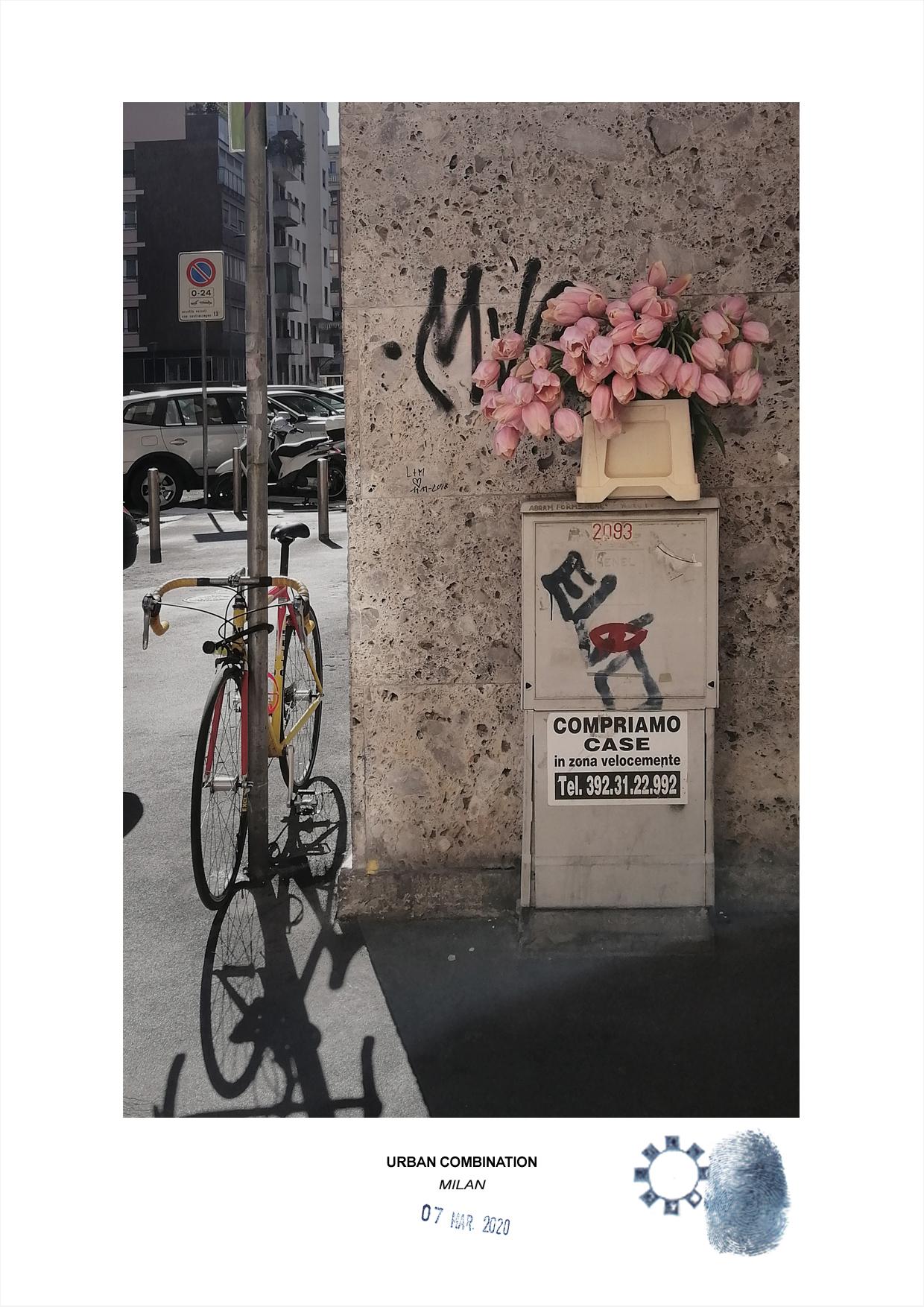 Arte contemporanea Maurizio Di Feo. Combinazione urbana, Milano. Fiori rosa abbandonati ad angolo con una bicicletta in un giorno di sole, pochi giorni prima della quarantena da coronavirus.