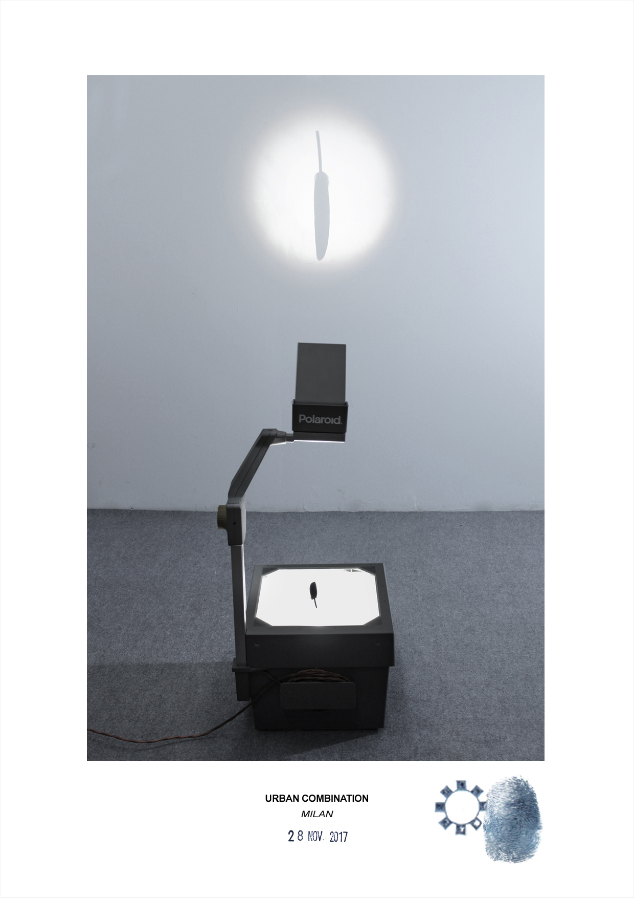 Arte contemporanea dell'artista Maurizio Di Feo. Combinazione in studio con piuma nera. Milano.